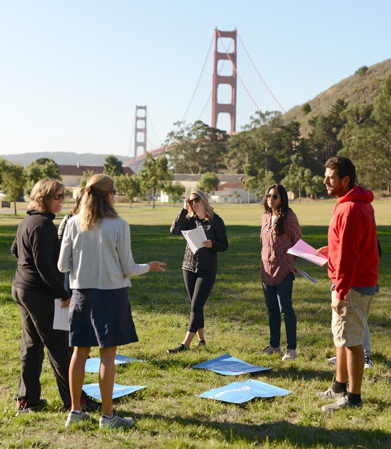 Ecology of Strengths Workshops | Polly Chandler Coaching